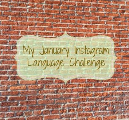 espanolita language linguistics challenge Spanish español