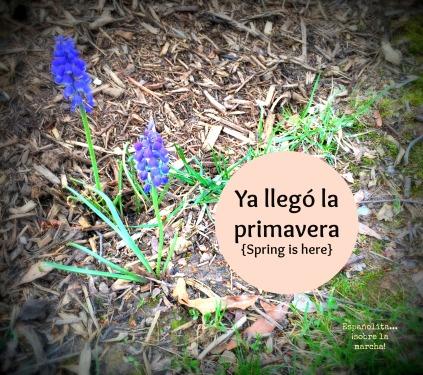 spring bilingual parenting bilingualism espanolita